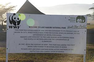 Lake Nakuru is our genesis where we secured what's now the Lake Nakuru National Park.